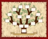Family tree template of 4 complete generations