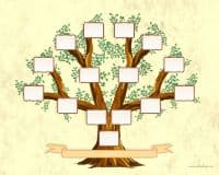 Family Tree Template of four generations